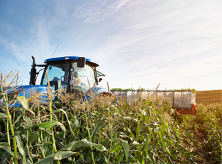 Agricultural Chemical And Industrial Materials